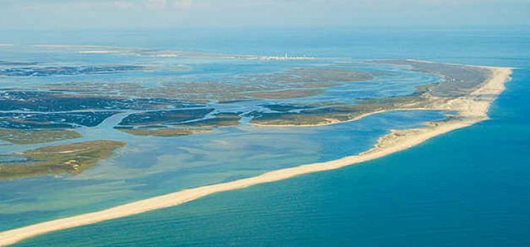Ria Formosa Natural Park, Preserve Natural Habitats of Wildlife